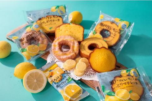 瀬戸内レモンの焼き菓子続々、全国ファミリーマートで