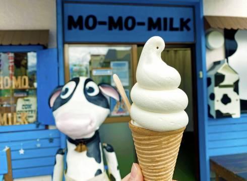 モーモーミルク、広島の白バラ牛乳専門店のクリーミーなソフトクリームで一息