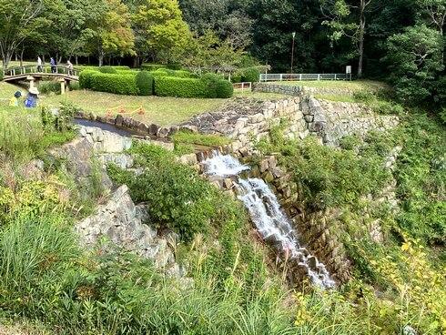 堂々公園の彼岸花、福山市神辺の日本庭園風公園