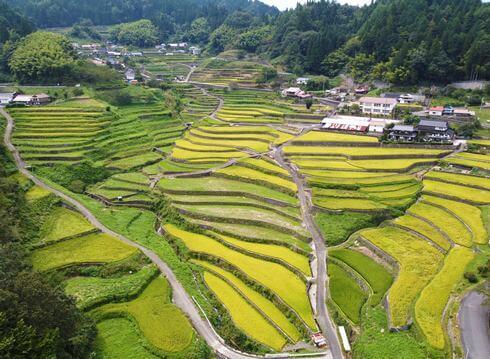 世界も認めた日本の絶景、井仁の棚田(いにのたなだ)